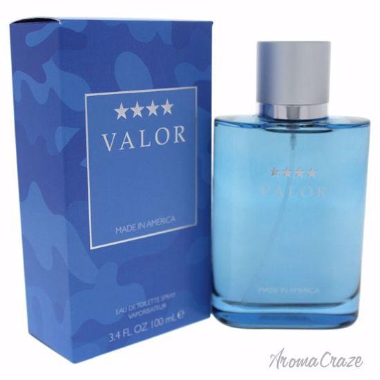 Dana Valor EDT Spray for Men 3.4 oz