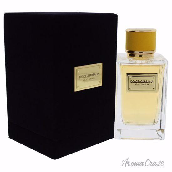 Dolce & Gabbana Velvet Ginestra EDP Spray for Women 5 oz