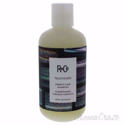 Television Perfect Hair Shampoo by R+Co for Unisex - 8.5 oz