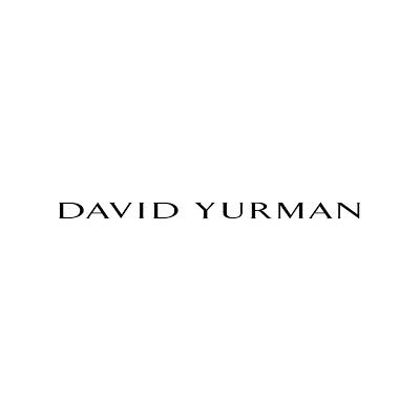 Picture for Brand David Yurman
