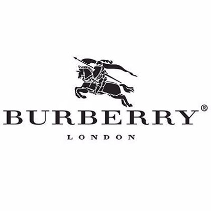 Picture for Brand Burberry BE