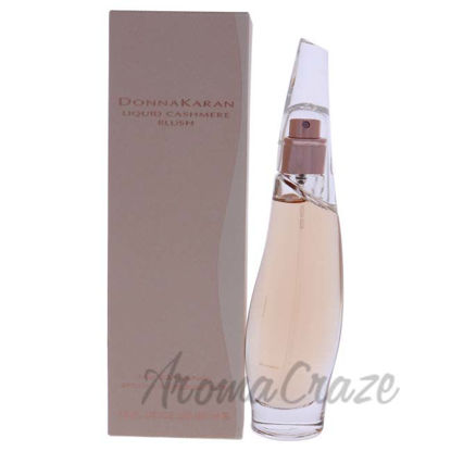 Picture of Liquid Cashmere Blush by Donna Karan for Women - 1 oz