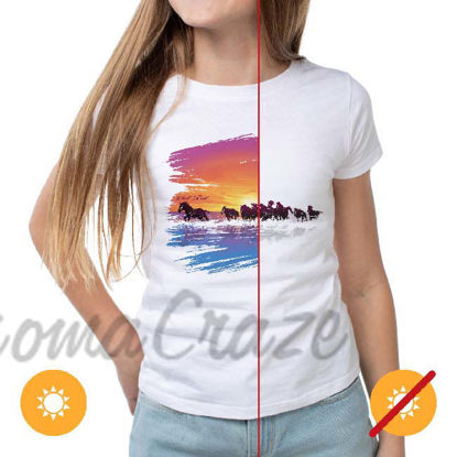 Picture of Women Crew Tee - Wild Horse - White by DelSol for Women - 1 Pc T-Shirt (S-C-P)