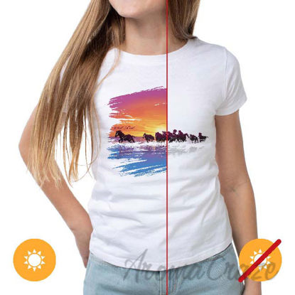 Picture of Women Crew Tee - Wild Horse - White by DelSol for Women - 1 Pc T-Shirt (XL)