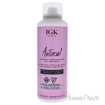 Picture of Antisocial Overnight Bond Building Dry Hair Mask by IGK for Unisex 5 oz Masque